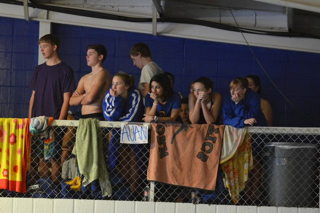 freedlander swim meet 2013